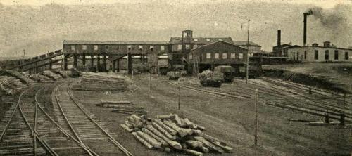A photograph of the surface buildings of a coal mine in Inverness, circa 1920. Shown is a group of mine cars on a slope, coming out of a long building high off the ground, railway tracks and a pile of logs in the foreground, and to the right two buildings with smokestacks.