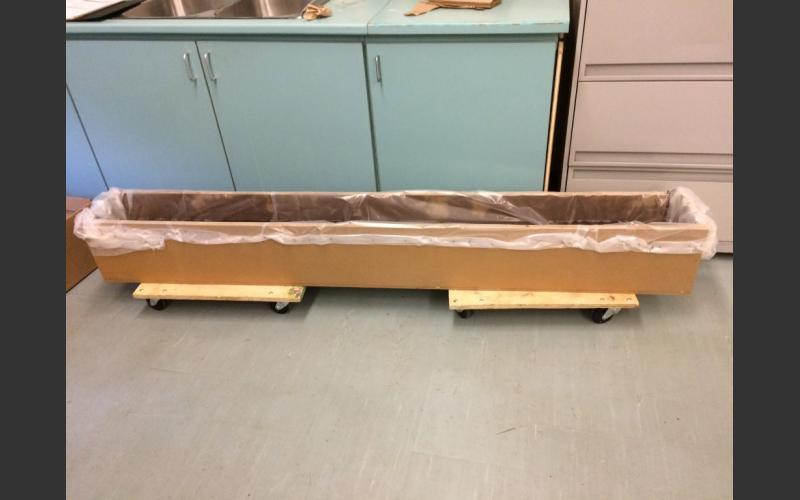 The fish belly rail sits in distilled water to prevent corrosion until it has a chemical bath to remove chlorides that would have covered it when it was buried. This will stabilize it for future display.