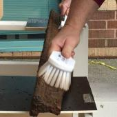 Brushes are used to provide a gentle cleaning of loose dirt and debris prior to a chemical treatment.