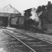One of many railway photos in our collection. This shows Locomotive 42 (which is also an artifact in our collection) at the railway sheds in Stellarton.