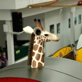 Can you spot the giraffe? He escaped from our circus car.